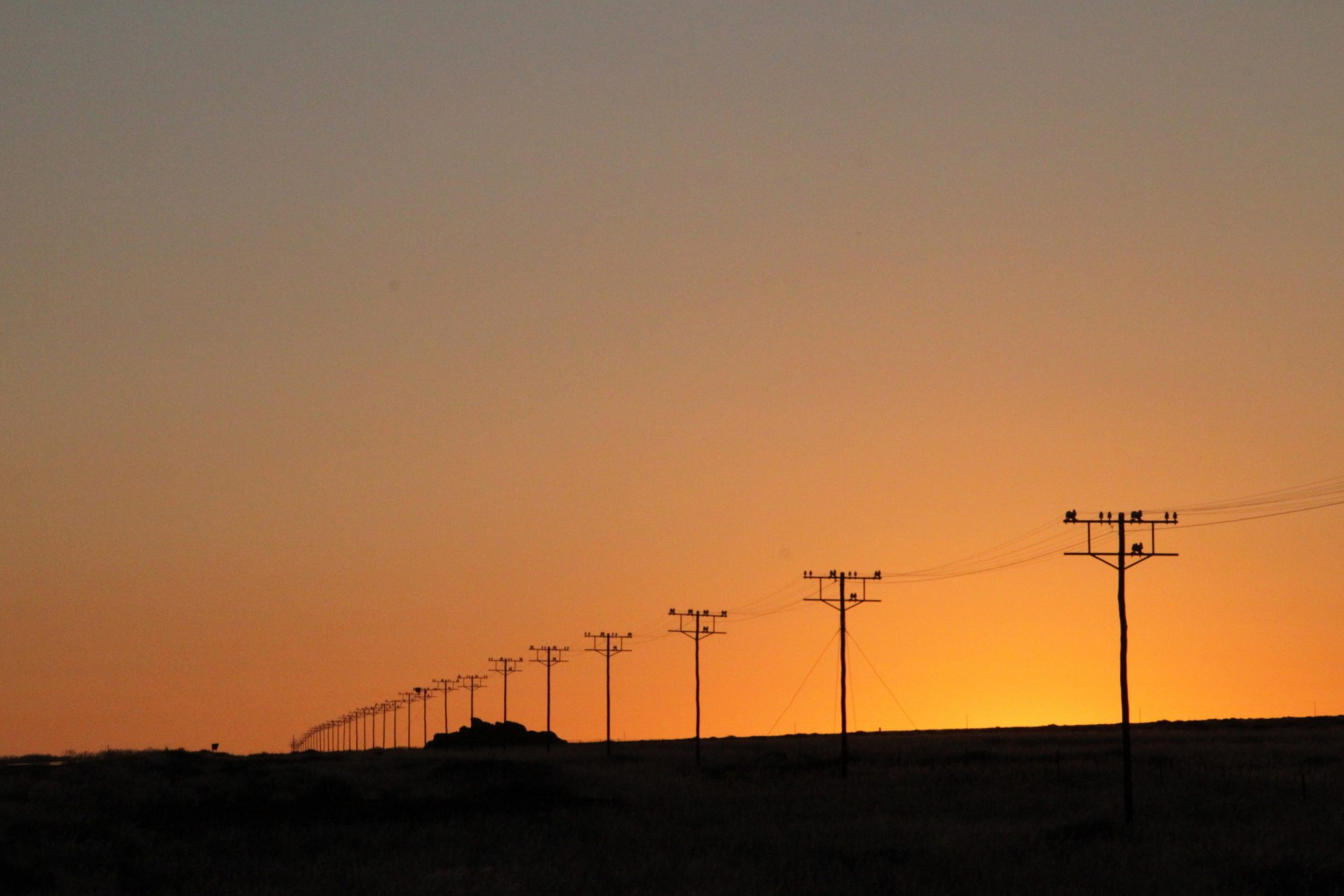 Electrical Power Poles : Green nudge the classic social comparison experiment by