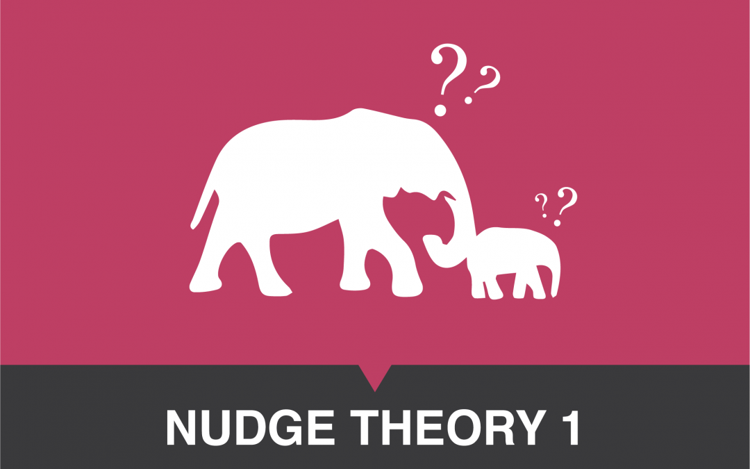 Nudge Theory 1: The Mechanics Of The Brain